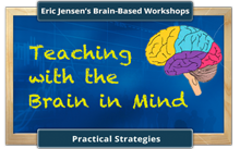 Brain based teacher workshop