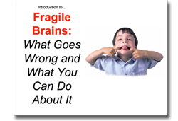Fragile Brains - teaching Strategy