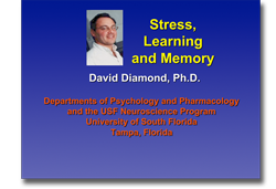 stress learning and memory powerpoint