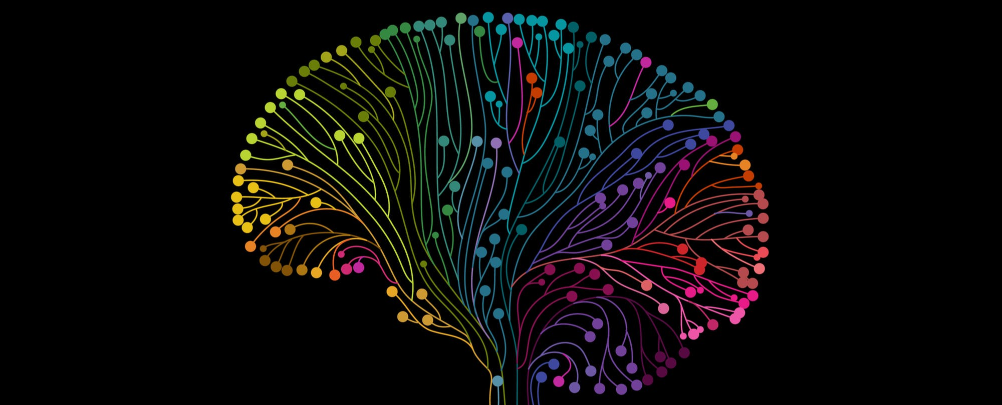 how to improve brain function and reverse poverty s impact on